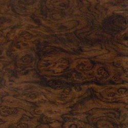 Walnut Burr 2